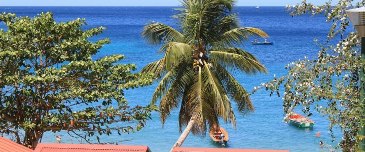 Le guide complet pour un voyage en Martinique inoubliable